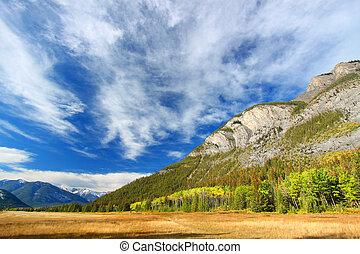 paysage, parc national, banff