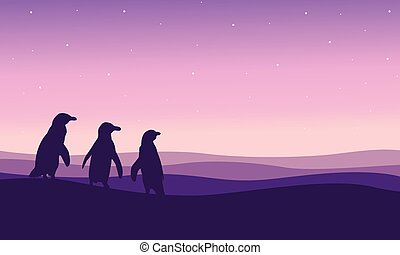 paysage, silhouette, colline, manchots