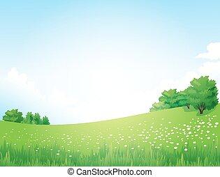 paysage, vecteur, arbres verts