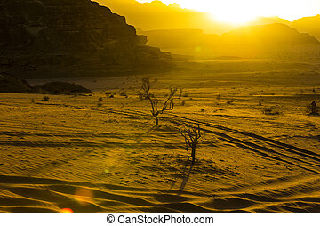 paysages, désert, jordanie, rhum wadi