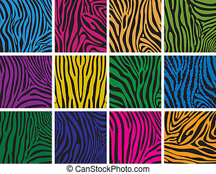 peau, coloré, textures, ensemble, zebra, vecteur