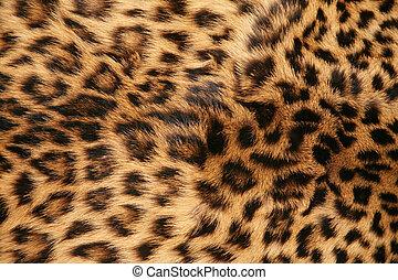 peau léopard