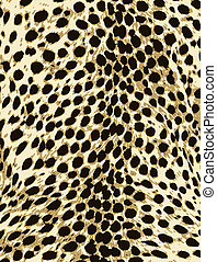 peau, mode, impression, léopard, animal