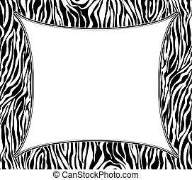 peau, texture, résumé, zebra, vecteur, cadre