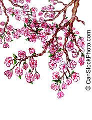 peinture, sakura, branche