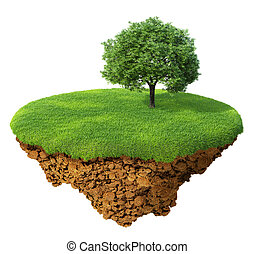 pelouse, arbre