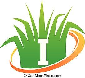 pelouse, initiale, centre, soin