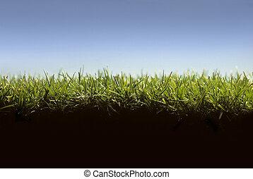 pelouse, niveau, projection, croix, herbe, section, terrestre