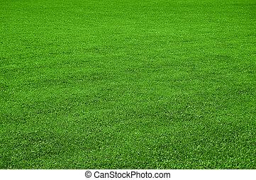 pelouse, texture