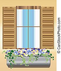 pensée, boîte, fenêtre
