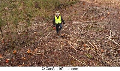 pente, ouvrier, tronçonneuse, escarpé, forêt