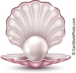 perle, coquille