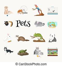 perroquet, maison, poisson rouge, ensemble, hamster, chat, animaux, chien, domestiqué, animaux familiers