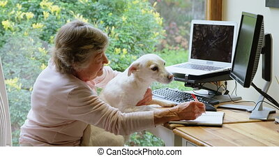 personne agee, elle, 4k, femme, jouer, chien