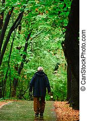 personne agee, forêt, marche, homme