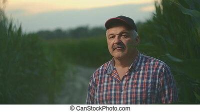 personnes agées, sourire, appareil photo, portrait, paysan, champ maïs, regarder