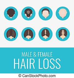 perte cheveux, ensemble, mâle, femme