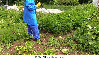 pesticides, pulvérisation, homme