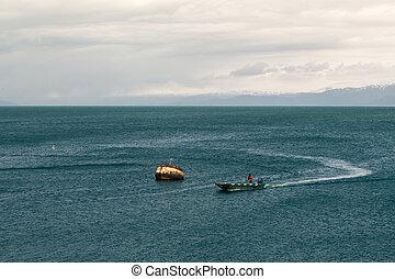 petit bateau, baie