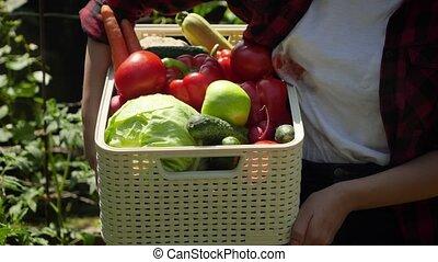 petit, concept, vegetables., légumes, mûre, vidéo, jardin, carryoing, arrière-cour, business, entiers, croissant, femme closeup, organique, boîte