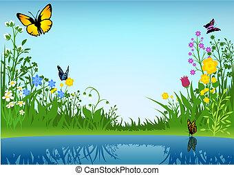 petit, papillons, lac