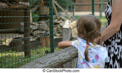 petite fille, mère, zoo