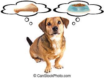 peu, chien, régime