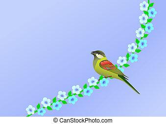 peu, fleurs, oiseau