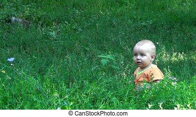 peu, herbe, parc, enfant