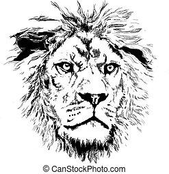 peu, lion, crinière
