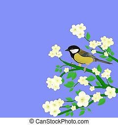 peu, oiseau