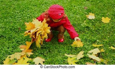 peu, parc, automne, rassembler, pousse feuilles, girl