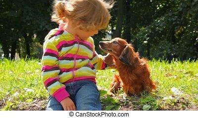 peu, parc chien, girl, caresser, dissimulation
