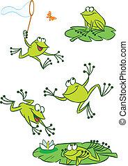 peu, vert, grenouilles