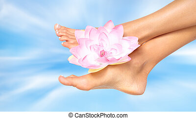 pieds, femme, flower.