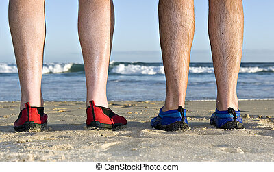 pieds, plage, veaux