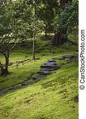 pierres, jardin, marcher