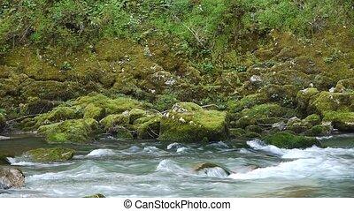 pierres, montagne, 12, arbres, gorge, rivière