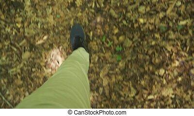 pierres, montagne, lent, personnel, jambes, moussu, prise vue., arbre, mouvement, vue, forêt, par, perspective, steadicam, mouillé, aller, espadrilles, racines, 4k, mâle