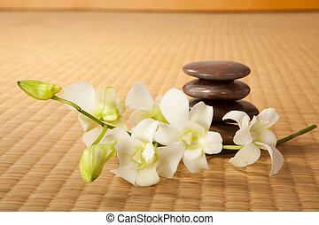 pierres, zen, orchidées