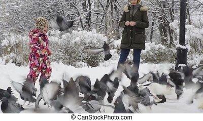 pigeons, parc, hiver, girl, jouer