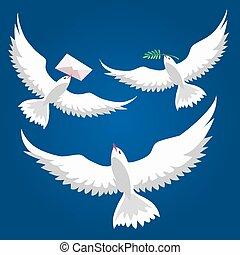 pigeons, voler, ensemble