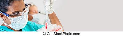 pipette, monde médical, laboratoire, recherche, échantillon, scientifique, femelle asiatique, sanguine