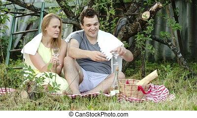 pique-nique, couple, jeune, conversation, vin buvant