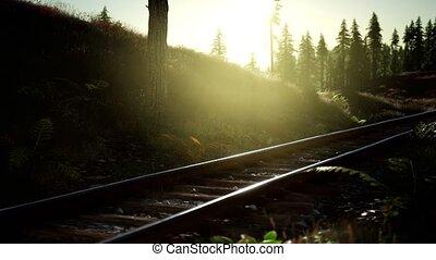 piste, coucher soleil, automne, couleurs, long, ferroviaire