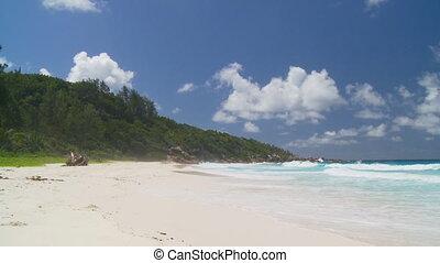 plage, écume, sablonneux, vagues