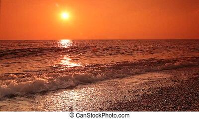 plage, aimer, marche long, couple