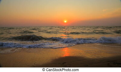 plage, coucher soleil couples, long, marche, été