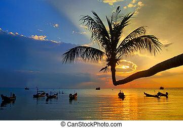 plage coucher soleil, exotique, thaïlande