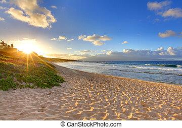 plage, oneloa, hawaï, exotique, plage coucher soleil, maui